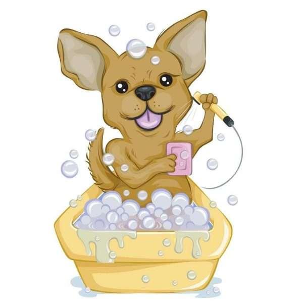 solid-dog-shampoo-planetary-concerns