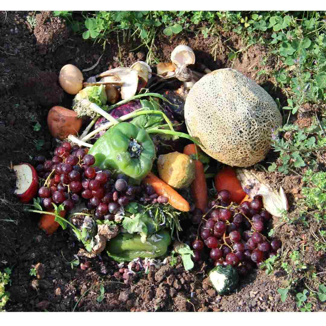 reducing-food-waste-planetary-concerns